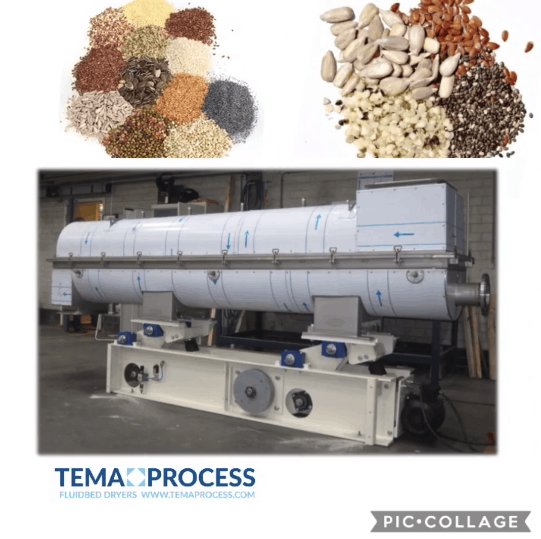 Seed and Kernel steam treatment